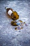 Garrafa de cerveja marrom quebrada que descansa na terra: alcoolismo co Fotografia de Stock Royalty Free