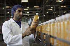 Garrafa de exame do sumo de laranja do trabalhador na planta de engarrafamento Imagem de Stock Royalty Free
