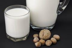 Garrafa de la leche y de las nueces Fotografía de archivo