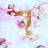 A garrafa de perfume, as rosas salto alto, o chapéu, os vidros e as pérolas localizam Foto de Stock