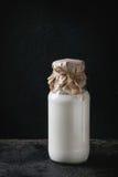 Garrafa de vidro do leite Imagem de Stock