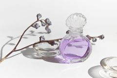 Garrafa de vidro do modelo da beleza cosmética roxa do perfume do cheiro da alfazema com a flora secada da flor no fundo branco imagens de stock royalty free