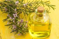 Garrafa de vidro dos alecrins e de óleo essencial fotografia de stock