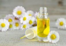 A garrafa do óleo cosmético da camomila para o prego e a cutícula importam-se fotos de stock royalty free