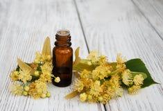 Garrafa do óleo essencial do Linden Imagem de Stock Royalty Free