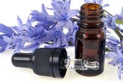 Garrafa do conta-gotas no close-up com uma flor no fundo foto de stock royalty free