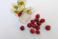 Garrafa do perfume imagens de stock royalty free