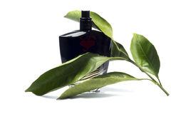 Garrafa do perfume, acessório pessoal, odor perfumado aromático Foto de Stock Royalty Free