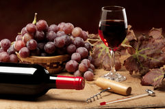 Garrafa do vinho Imagem de Stock