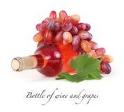 Garrafa do vinho e das uvas fotografia de stock royalty free