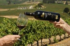 Garrafa do vinho e do copo de vinho sul - africano Fotos de Stock Royalty Free