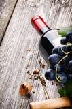 Garrafa do vinho tinto com uva fresca Imagens de Stock