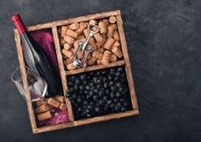 Garrafa do vinho tinto e do vidro vazio com as uvas escuras com corti?a e corkscrew dentro da caixa de madeira do vintage no fund foto de stock
