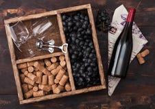Garrafa do vinho tinto na madeira com vidros vazios com as uvas escuras com cortiça e o corkscrew dentro da caixa de madeira do v imagem de stock royalty free