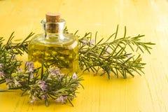 Garrafa dos alecrins e de óleo essencial imagens de stock