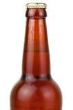 Garrafa molhada da cerveja fotografia de stock