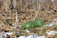 Garrafa plástica verde na floresta foto de stock