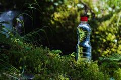 A garrafa transparente do plástico A da agua potável com uma tampa vermelha está na grama e no musgo no fundo do Fotos de Stock Royalty Free