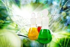 garrafas com líquido no fim do laboratório acima Imagem de Stock Royalty Free