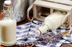 Garrafas com leite fresco fotografia de stock