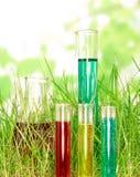 Garrafas com a química colorida líquida imagem de stock