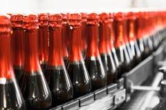 Garrafas da bebida Foto de Stock