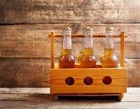 Garrafas da cerveja Fotografia de Stock Royalty Free