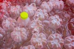 Garrafas de água bebendo Imagem de Stock Royalty Free