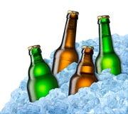 Garrafas de cerveja no gelo Fotografia de Stock Royalty Free