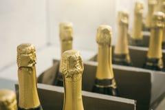 Garrafas de Champagne em umas caixas na loja de vinhos, fim acima foto de stock royalty free