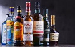 Garrafas de tipos globais sortidos do licor duro Fotografia de Stock Royalty Free