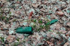 Garrafas de vidro verdes velhas que colocam na terra na floresta coberta com as folhas caídas velhas Problema da poluição do ambi imagens de stock