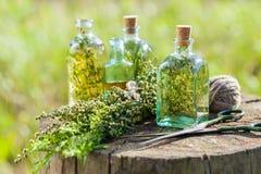 Garrafas do óleo essencial do tomilho, do estragão e dos alecrins Foto de Stock