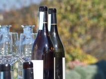 Garrafas do vinho e dos vidros com o campo de Langhe no b imagens de stock royalty free