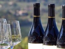 Garrafas do vinho e dos vidros com o campo de Langhe no b imagens de stock