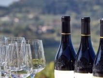 Garrafas do vinho e dos vidros com o campo de Langhe no b imagem de stock royalty free