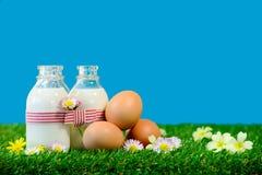 garrafas pequenas do leite e dos ovos na grama Fotos de Stock Royalty Free