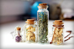 Garrafas secadas das flores Imagem de Stock Royalty Free