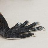 Garras da iguana marinha imagens de stock