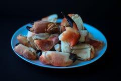 Garras del cangrejo de la costa atlántica foto de archivo libre de regalías