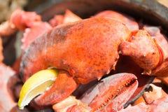 Garras frescas do caranguejo na bacia com limão Cozinhando o marisco fotografia de stock