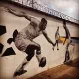 Garrincha som spelar fotboll royaltyfria bilder