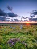 Garrow Tor on Bodmin Moor Royalty Free Stock Photos
