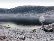 garry幽谷苏格兰冬天 库存照片