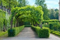 Garten Lizenzfreie Stockbilder