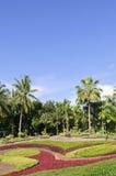 Garten. Lizenzfreie Stockbilder