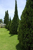 Garten Lizenzfreie Stockfotos