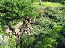Garten Stockfotos