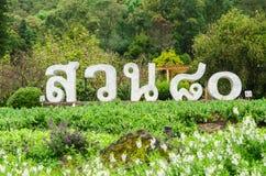 Garten achtzig am doi Ang Khang, Chiang Mai Thailand Lizenzfreie Stockbilder