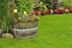 Garten-Blumen Lizenzfreies Stockbild
